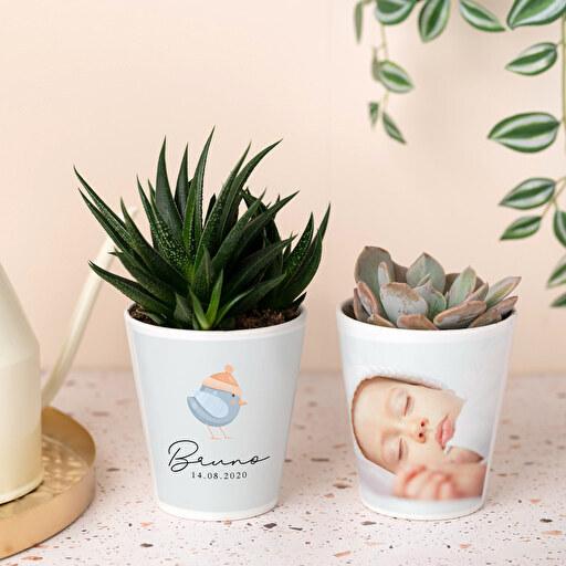 Maceta cerámica