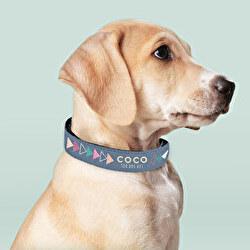 Collar de perro