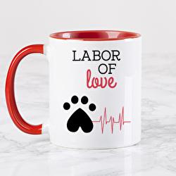 Diseño Vet, labor of love